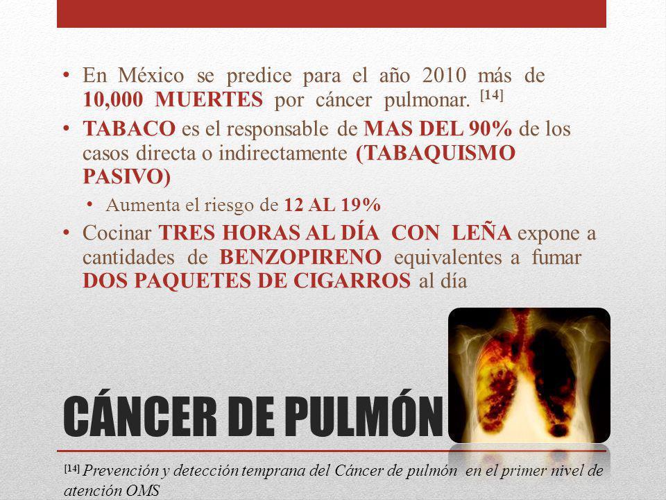 En México se predice para el año 2010 más de 10,000 MUERTES por cáncer pulmonar. [14]